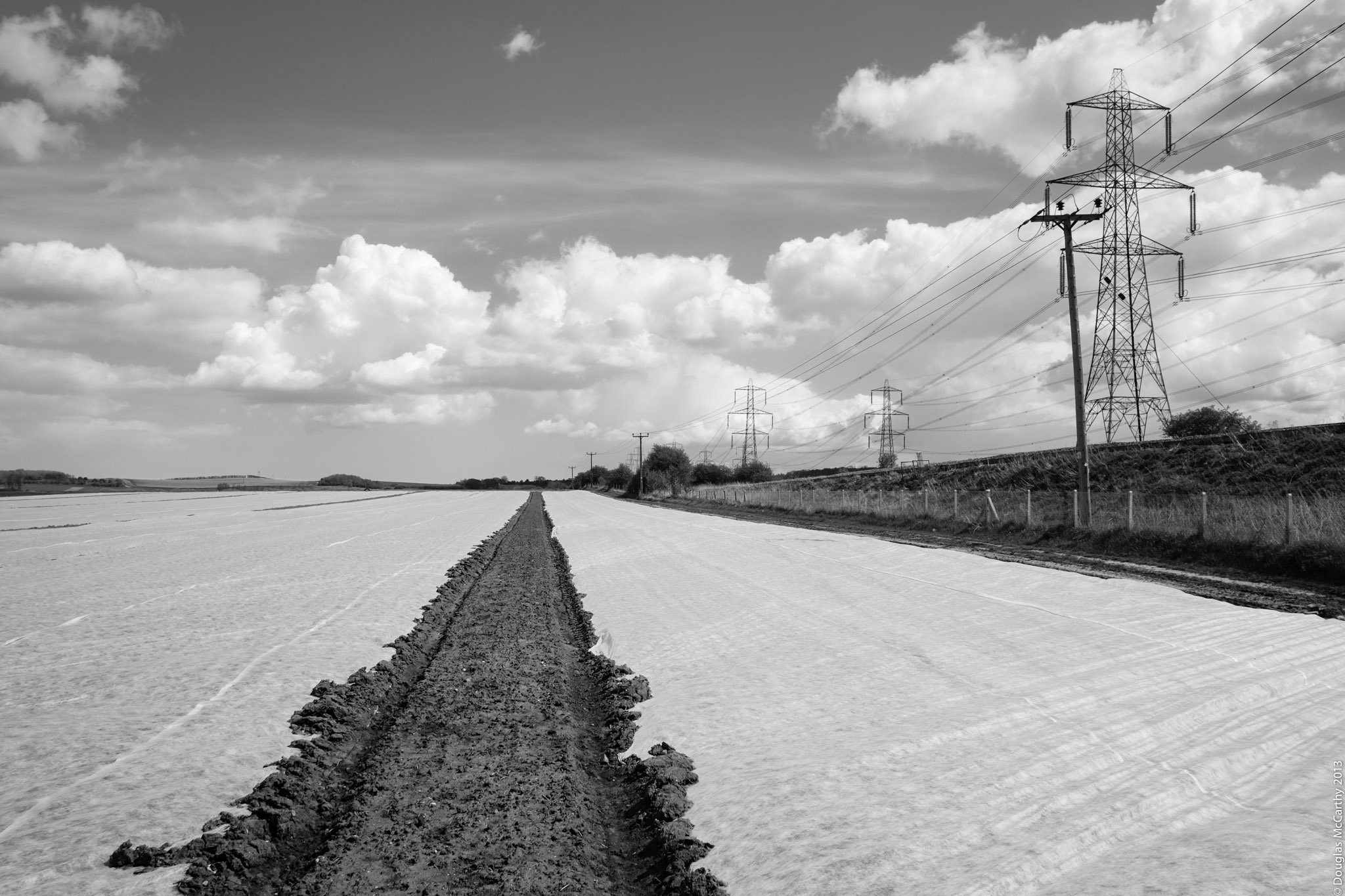 Furrow, Isle of Grain, 2012