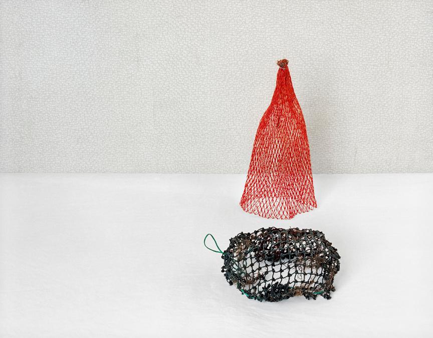Flotsam I (2 nets), c 2009
