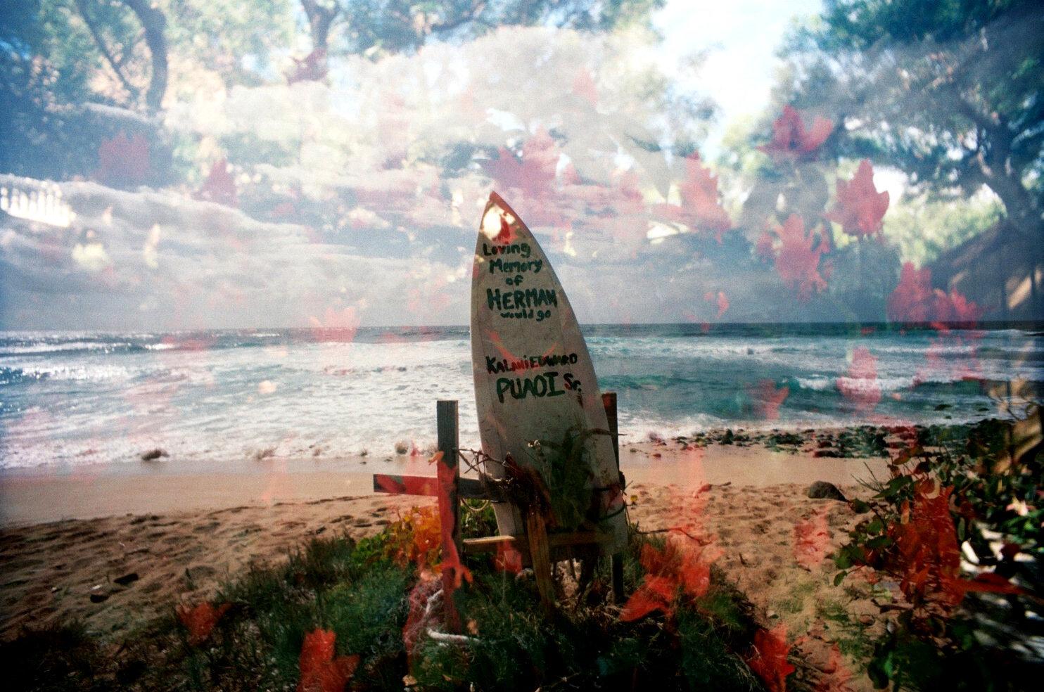 bestsurfpic.jpg