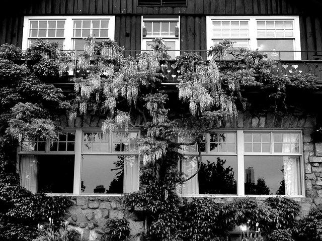 House04.jpg