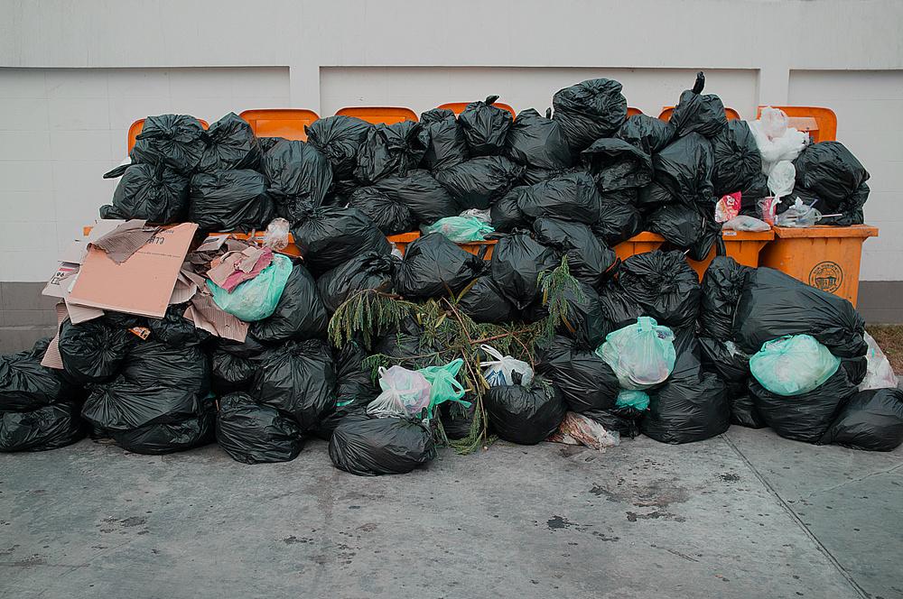 trash def site df.jpg