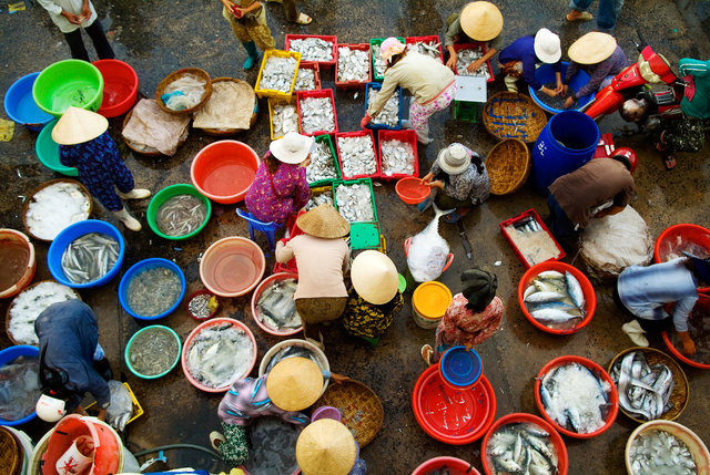 Nha Trang Fish Market I