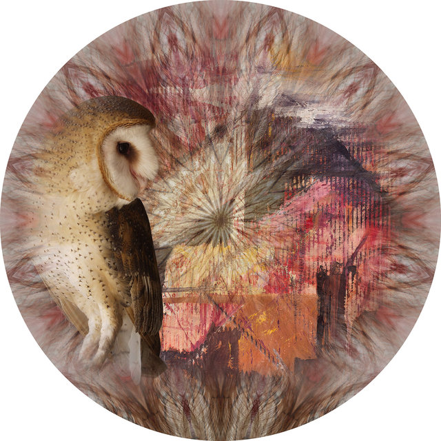 Circle 02 (Owl In Eden)