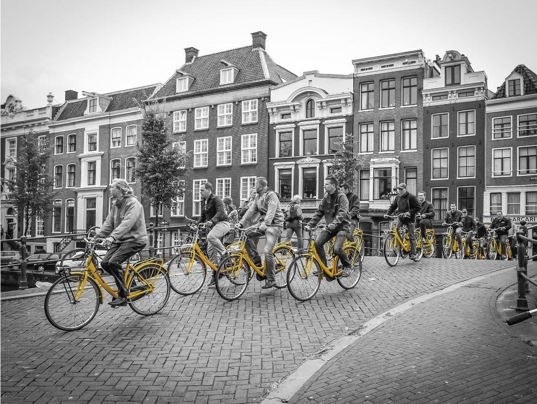 Yellow bikes.JPG