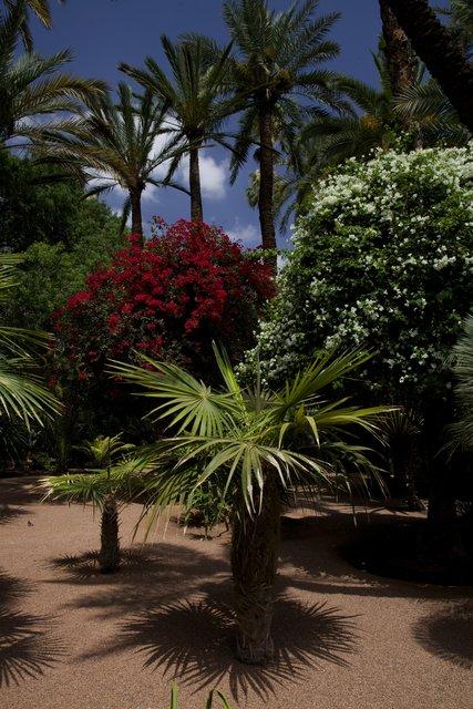 Morocco_045.jpg