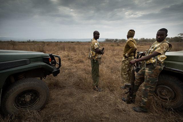 Kenia Lions32.jpg