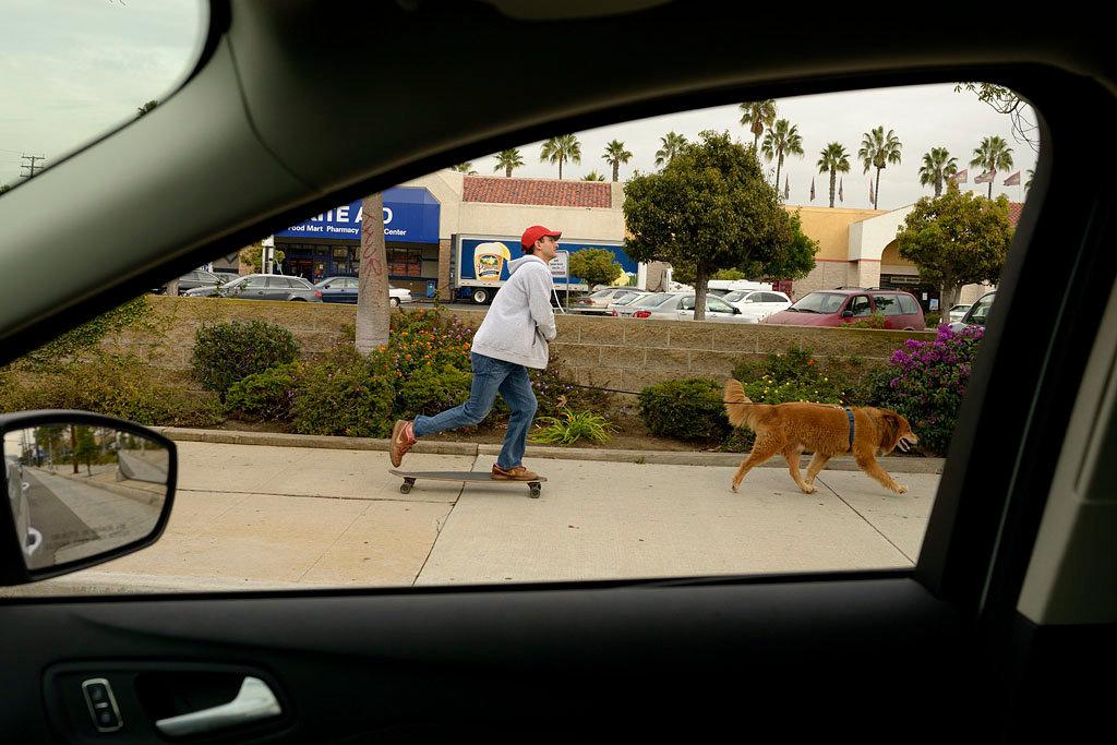 lincolnskateboarddogpull.jpg