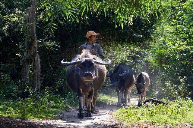 Laos_012.jpg