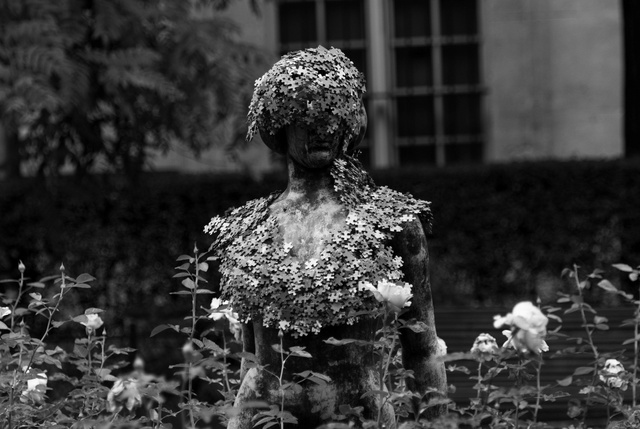 Jigsaw Lady