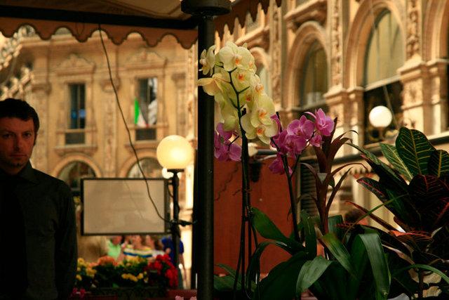 Milán 2011