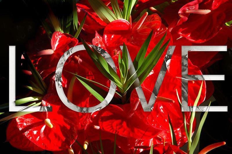 love10.jpg