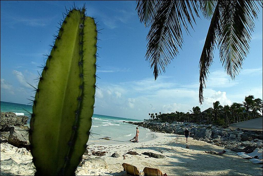 MEXICO2006_16.jpg