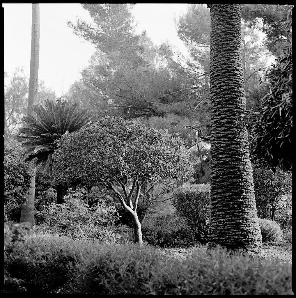 Noto Garden