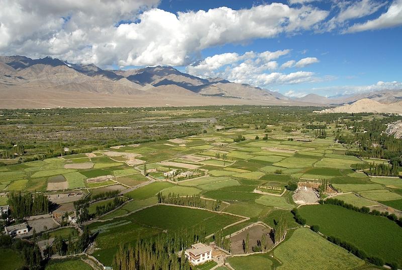 Ladakh_12.jpg