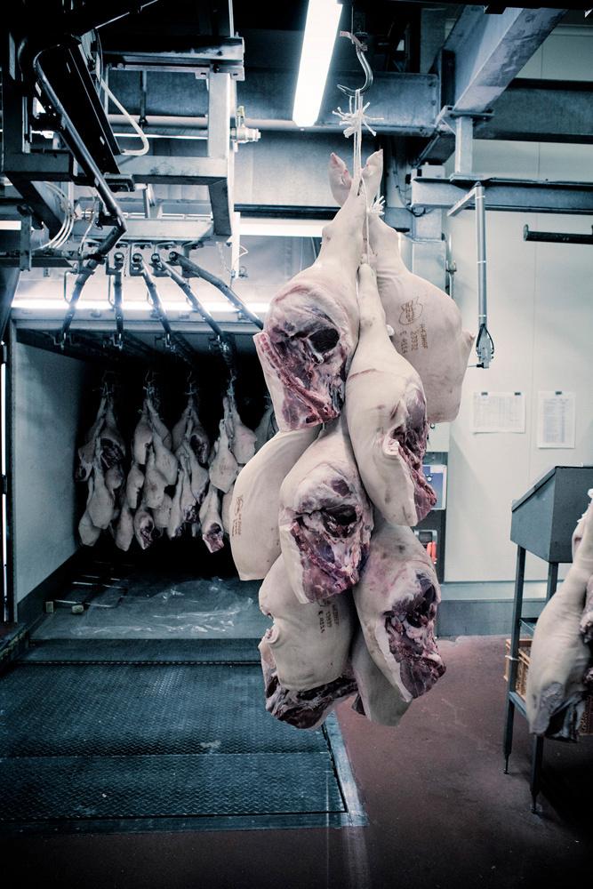 vlees2.jpg