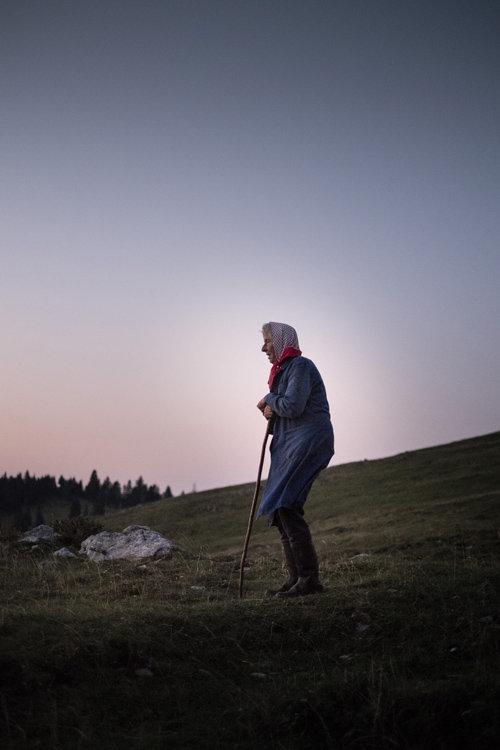 shepherds_014.jpg