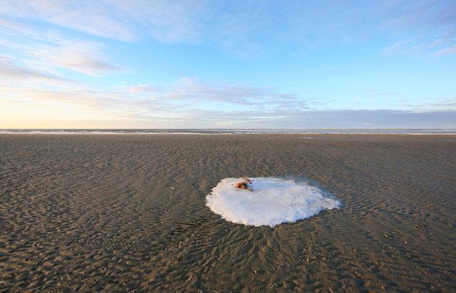 sneeuw op strand schiermonnikoog