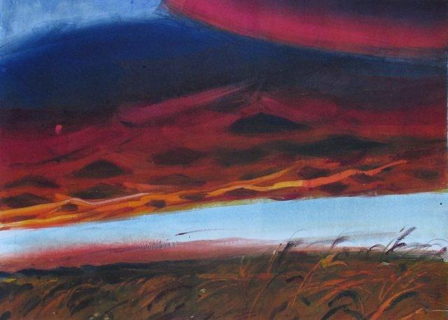"""Illinois Sunset- Magenta   22 x 29"""""""