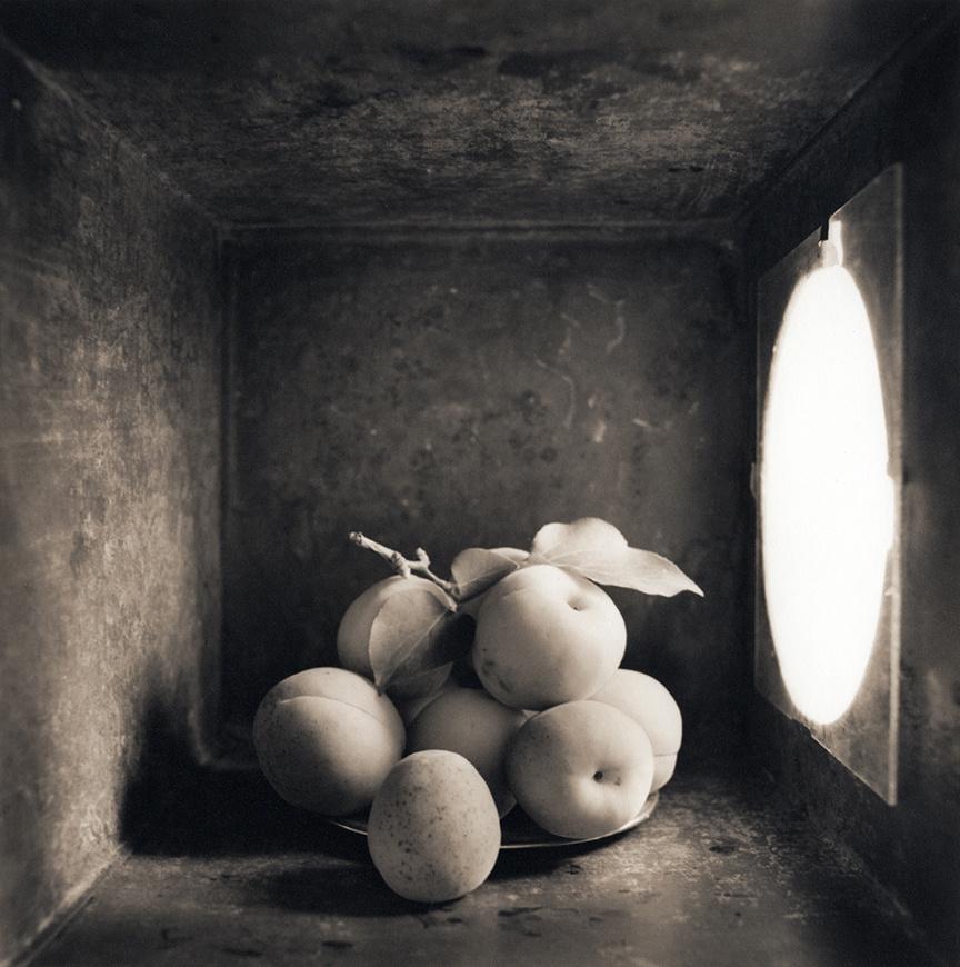 Apricots, c 2000