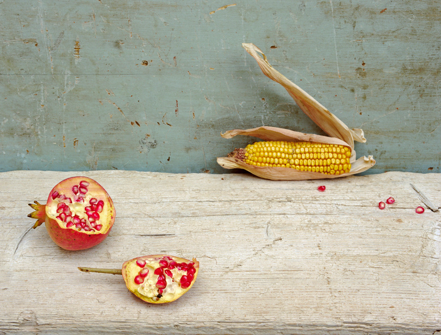 Pomegranate & Corn, c 2007