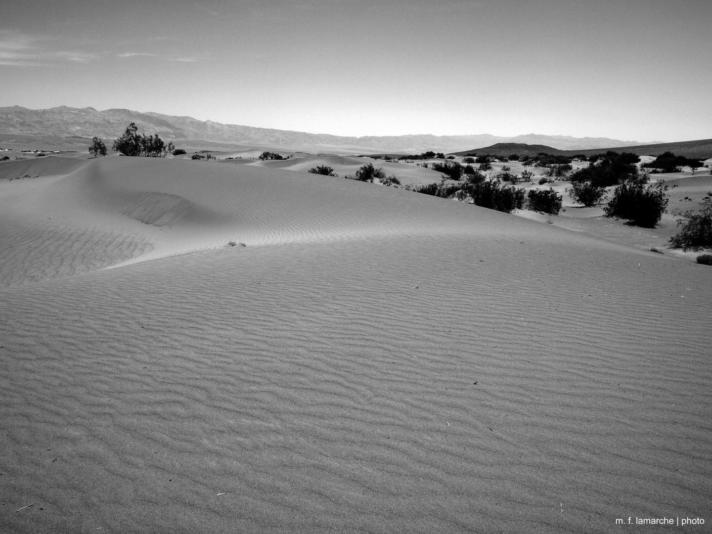 Mesquite Flat Sand Dunes, Death Valley, CA