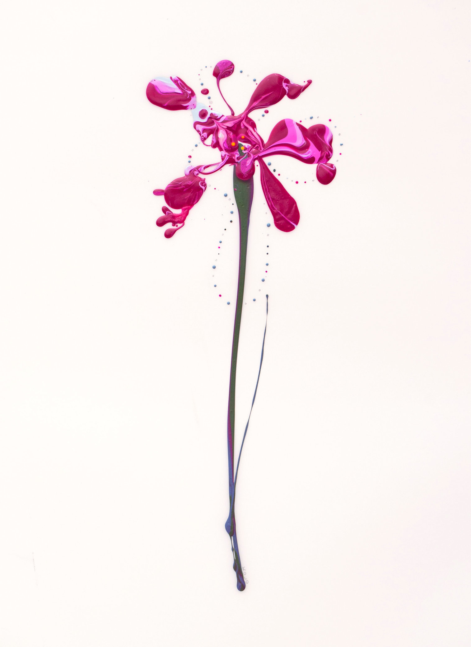 Flora XXII