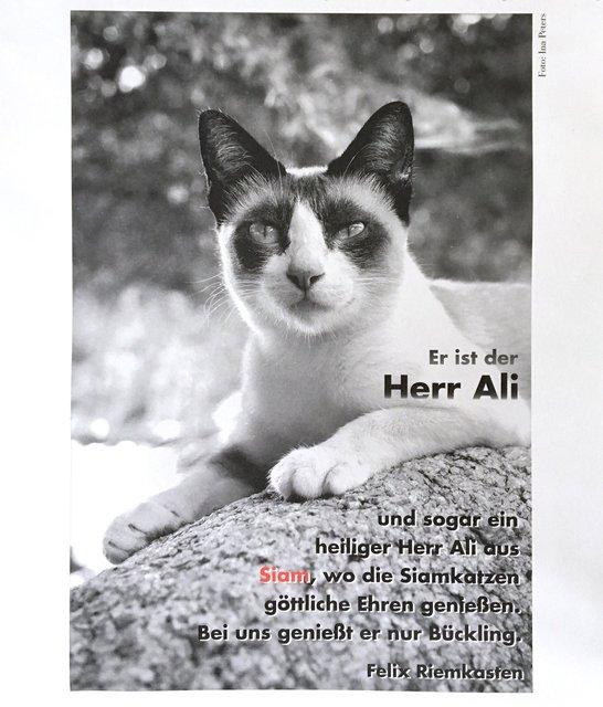 Schöffling Verlag