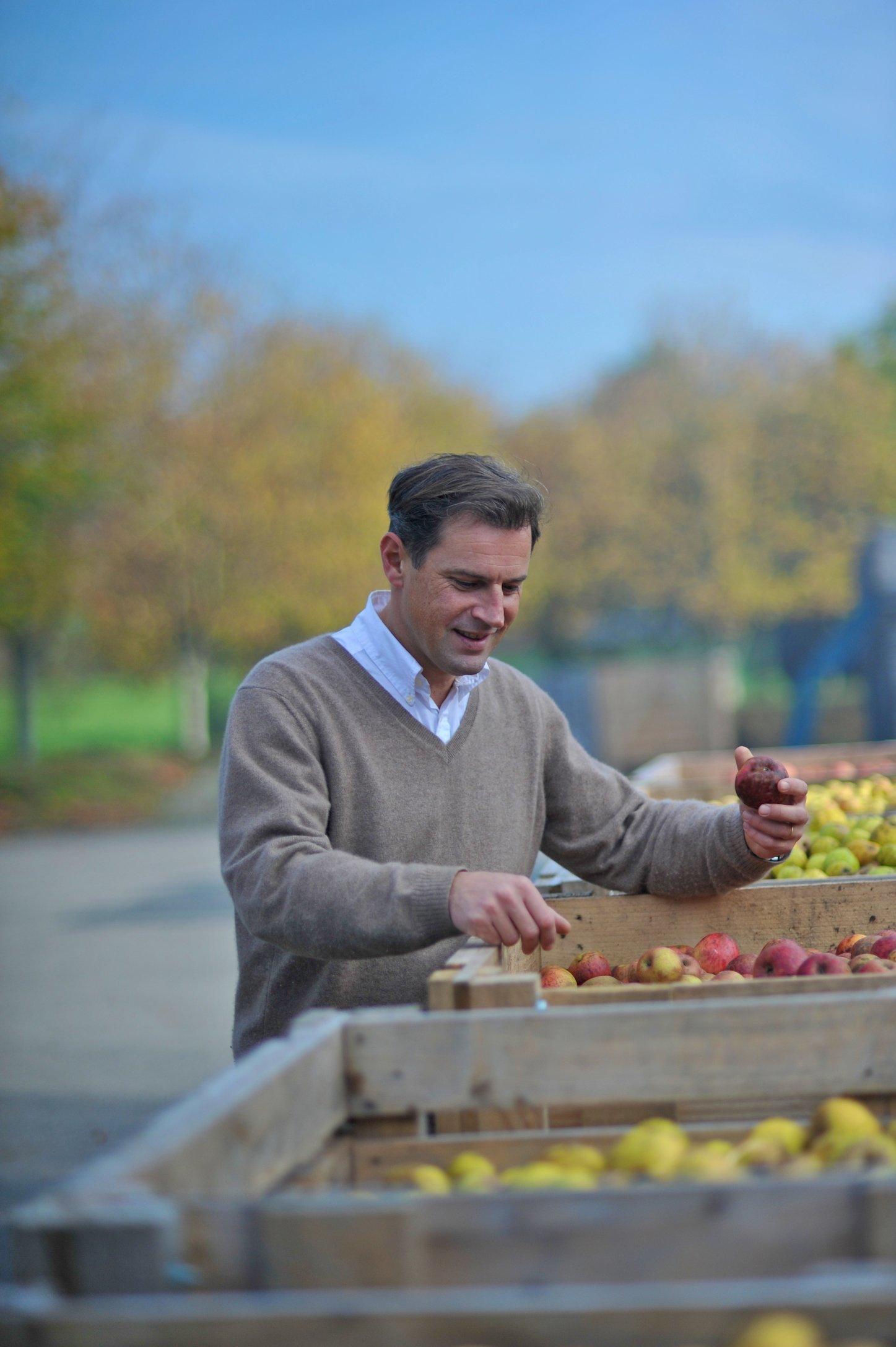 0026Cider Harvest Brittany