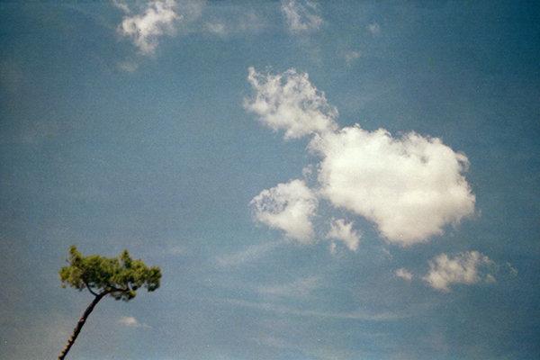 pinino-sky.jpg