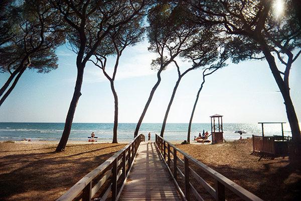 view-beach-pontile-pineta.jpg