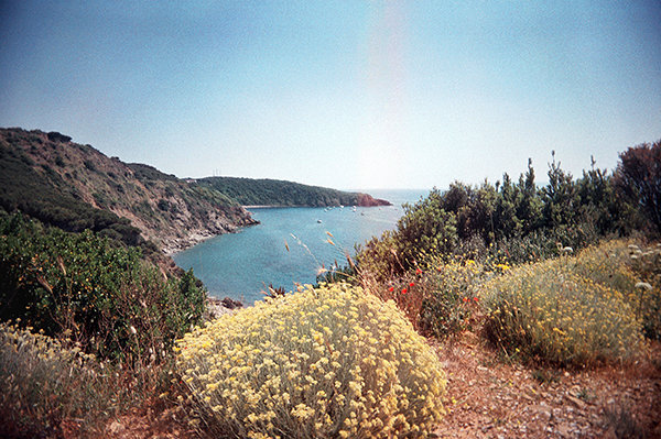 view fosso alle canne OK-wb6.jpg