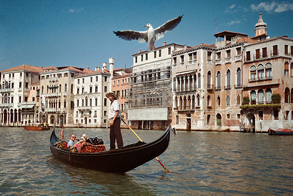 venezia-gondol-gabbiano.jpg
