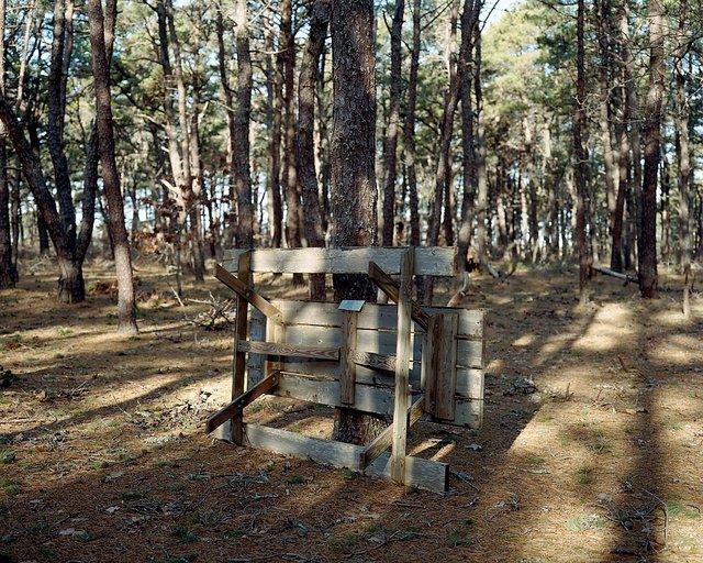 Wellfleet Camp Ground.jpg
