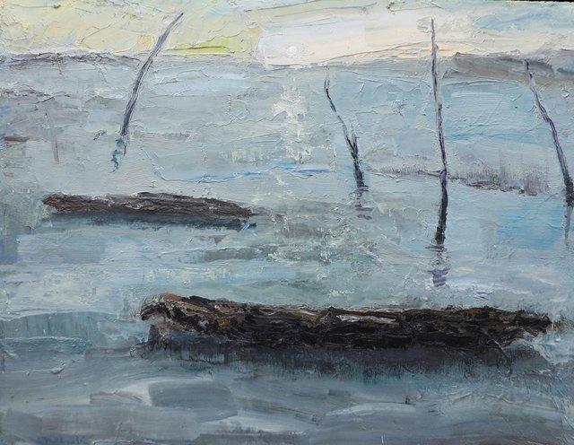 Barques en hiver