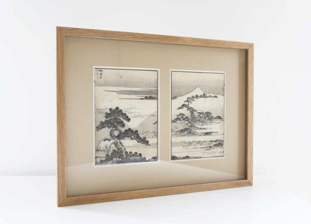 Mont Fuji depuis les marais