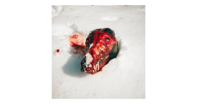 006_Vol 1_wolf head.jpg