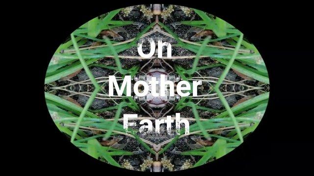 Zaide IO Mother Earth_Moment9.jpg