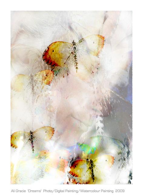 Dreams by Ali Gracie