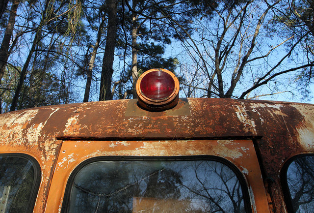 Bus - Wilson County
