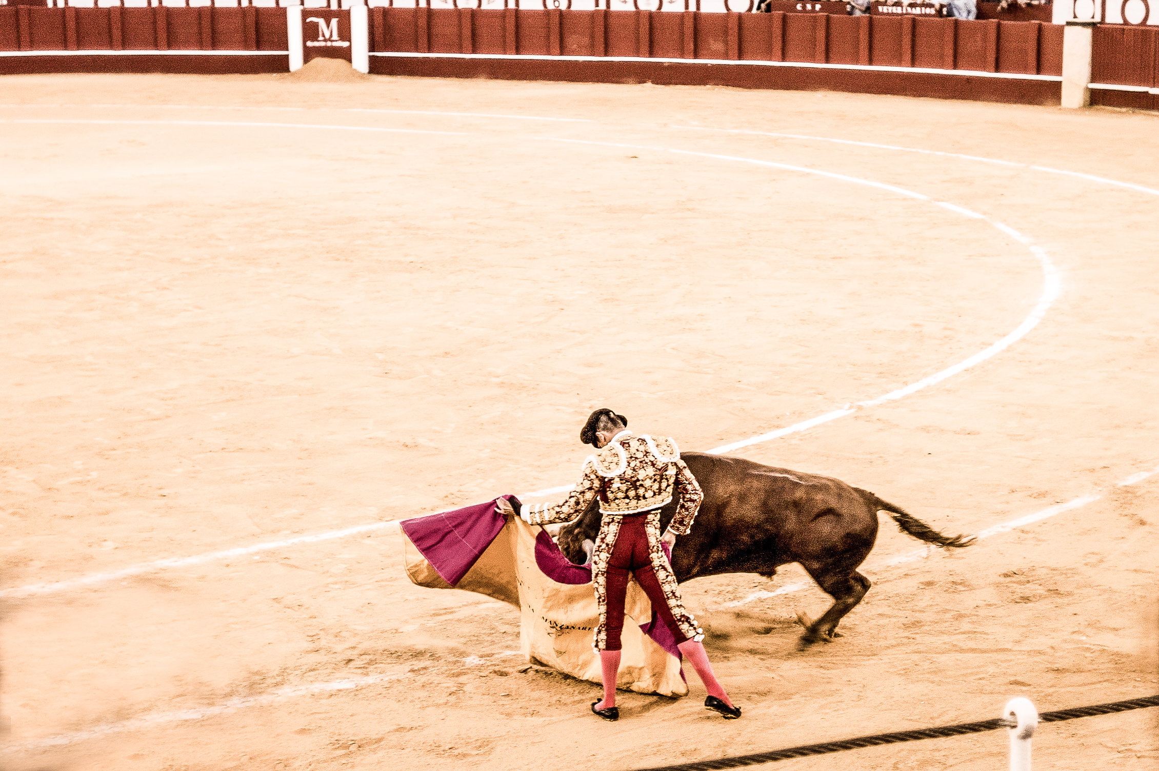 The Bullfight-190-bewerkt.jpg