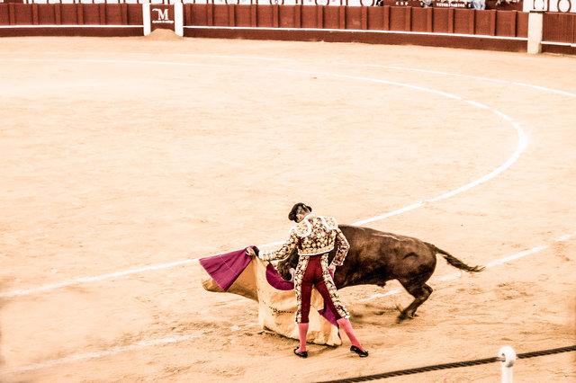 The Bullfight-190-bewerkt.jpg