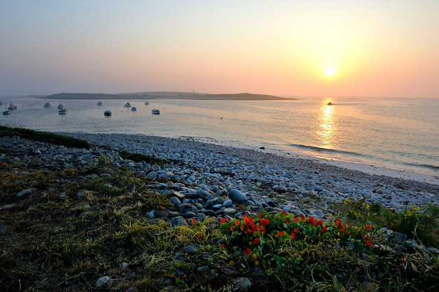 Île Molène, Finistère