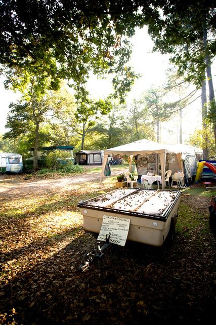 x_x_De Camping_27.jpg