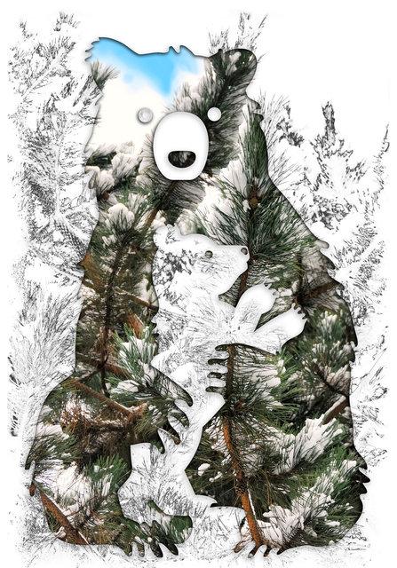 Bear-158.jpg