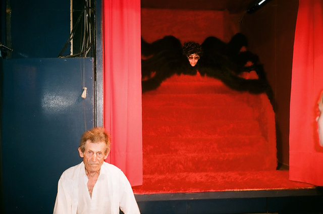 la femme araignée, Camargue, 2009.jpg