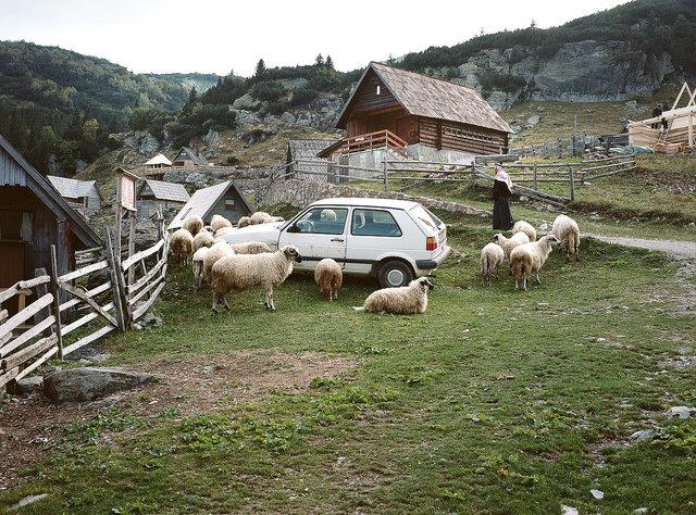 drive-in, Prokoško, 2015.jpg