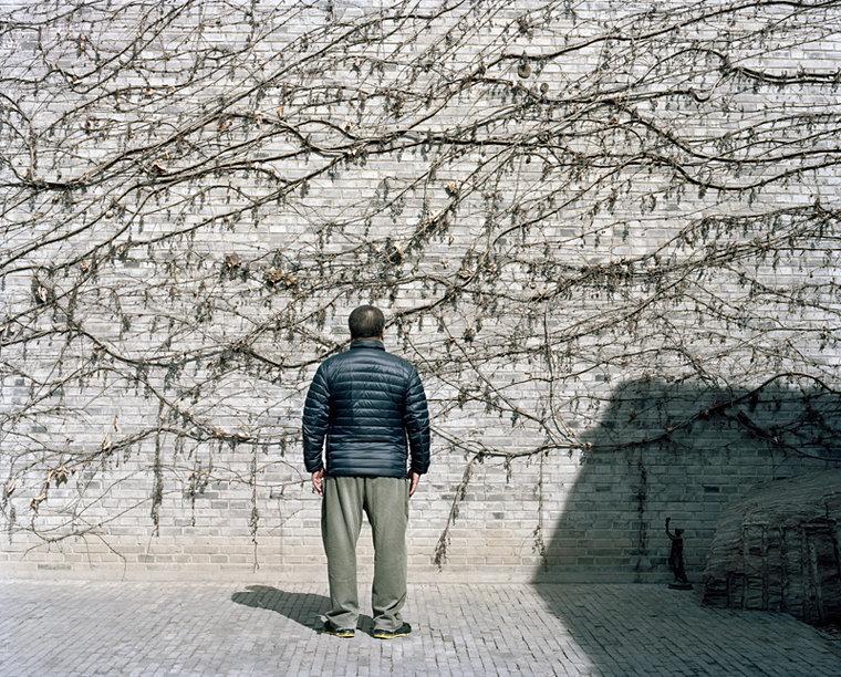 Ai Weiwei / Beijing