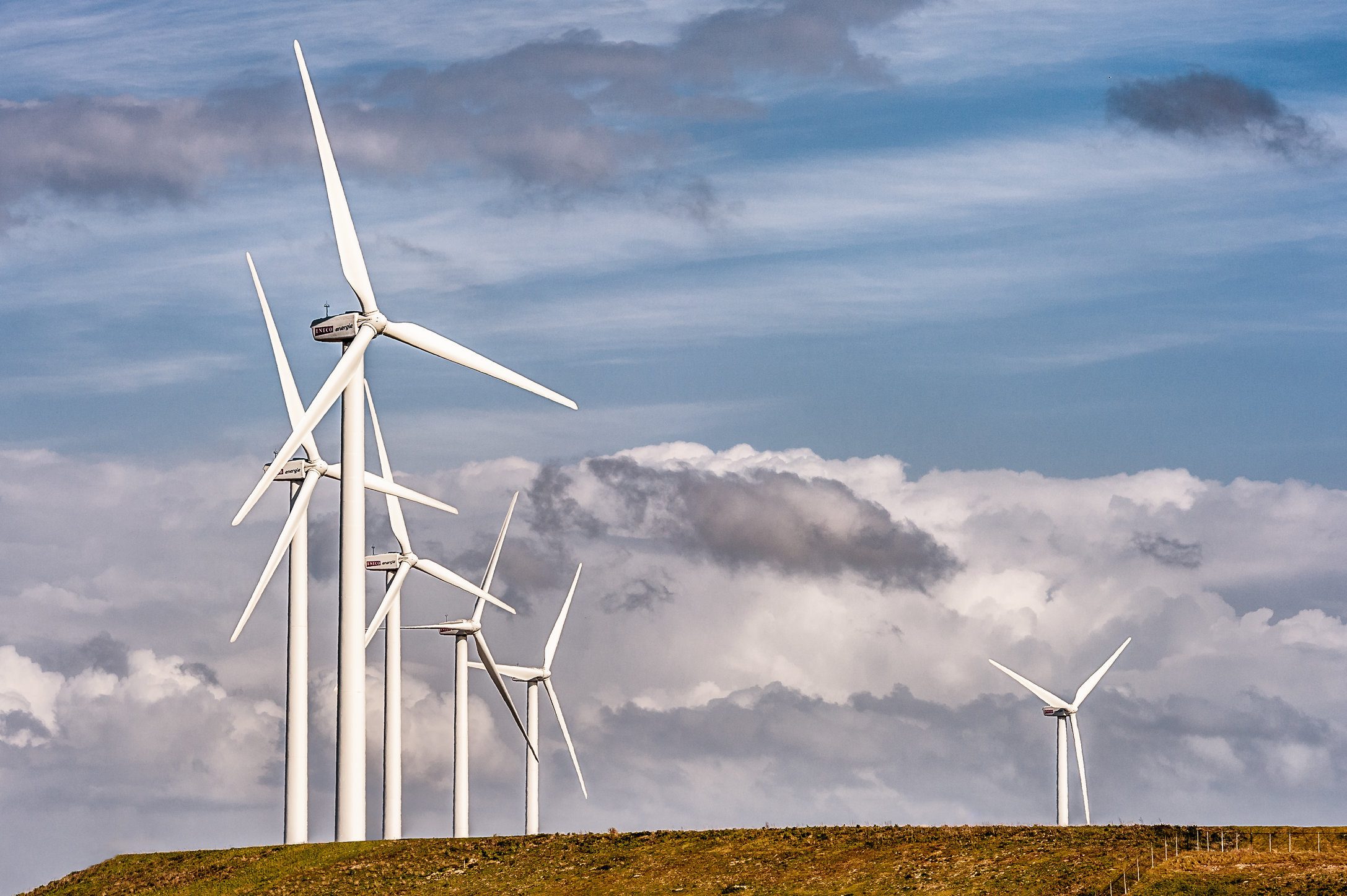 Windpark Eneco Tweede Maasvlakte