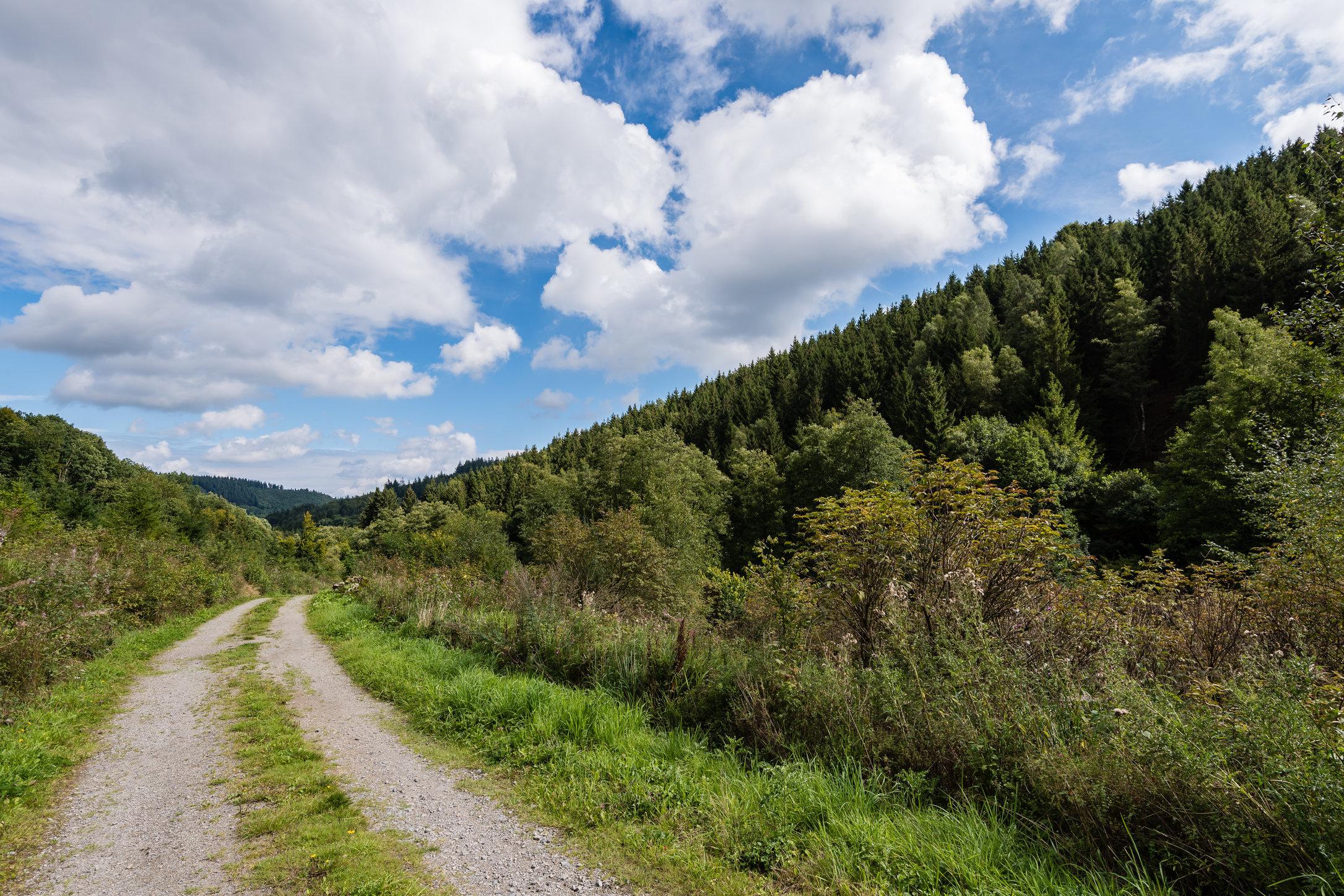 Monschau, (Duitsland) Eichenwälder wandeling