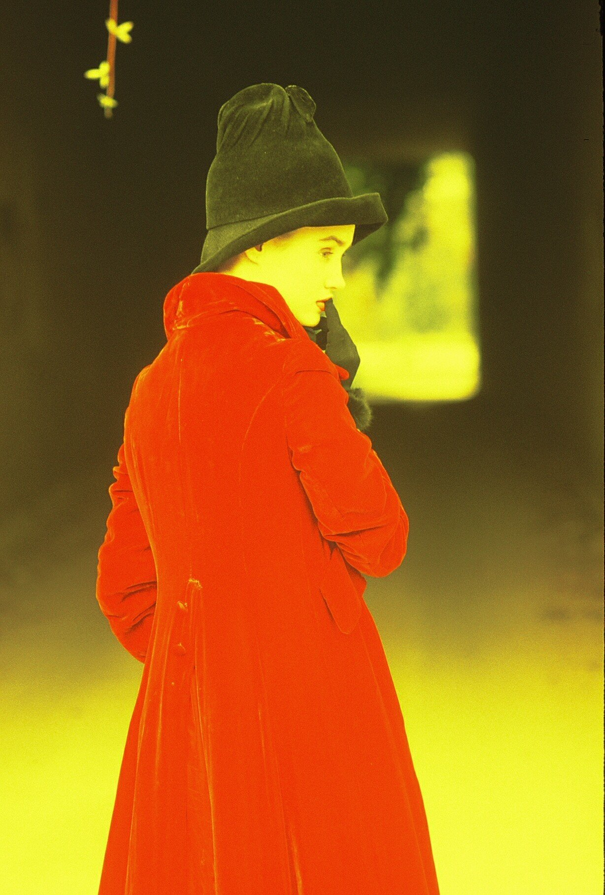 JENNIFER WILSON - International fashion, print model in JAPAN. She has starred in international fashion campaigns.